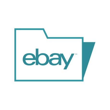 Modulo EBay