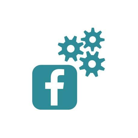 Outsourcing Facebook
